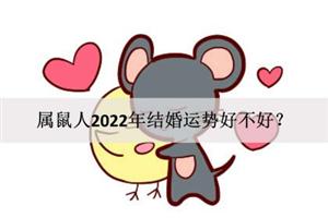 属鼠人2022年结婚运势好不好?是否喜结连理?
