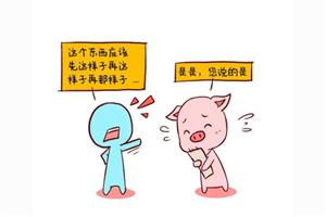 生肖豬的屬相性格特點及優缺點分析大全