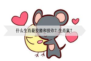 什么生肖最狡猾和狡诈?生肖鼠?