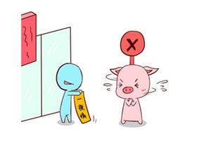 属猪男和十二生肖女爱情指数如何,谁是最适合他的人?