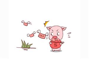 2019年属猪的财运如何?起伏变动很大,时好时坏!