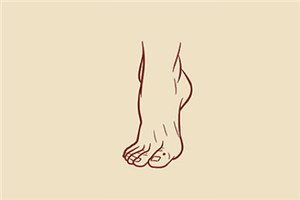体相分析脚背薄的女人命运,桃花运旺,事业平淡!