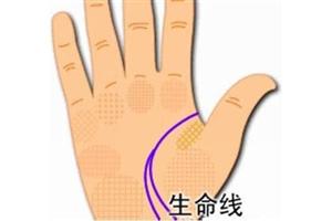 生命线女人看哪只手?左手还是右手
