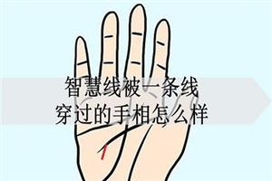 智慧线被一条线穿过的手相怎么样