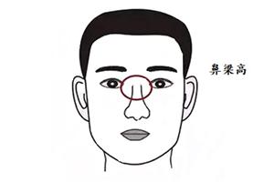 鼻梁高,责任心强的男人面相分析