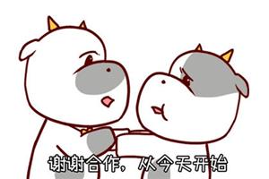 金牛座下周运势查询【2019.12.02-2019.12.08】:财富进账丰厚