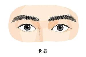 眉毛长的男人怎么样?性情温和、天资聪颖!
