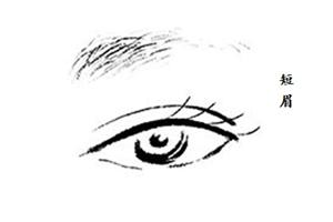女人眉毛短有什么说法?属于典型的事业型女强人!