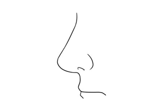 鼻相怎么看,什么样的鼻相是好的鼻相?