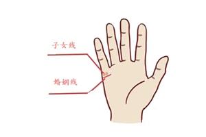 手相子女线看男人还是女人的手比较准?