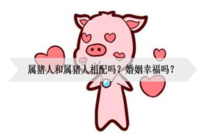 属猪人和属猪人相配吗?婚姻幸福吗?