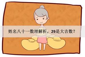 姓名八十一数理解析,29是大吉数?