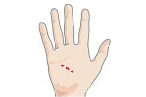 健康线出现在手掌中,代表有大病吗?