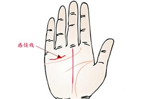 手相感情线有两条是代表会二婚吗?