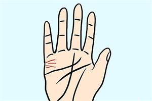 手相姻缘线有多条代表什么意思?