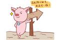 2007年出生的生肖属猪的学生2019年运势查询