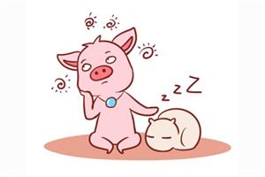 属猪的人性格特点