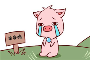 生肖猪和什么属相最配