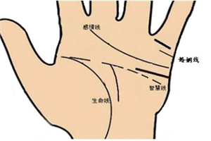 手掌智慧线是哪条?智慧线折断代表什么意义
