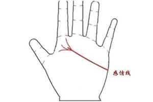 手相感情线怎么看你结几次婚?中间分叉表示几段姻缘