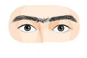 面相分析连心眉的人好不好?缺乏魄力和远见?