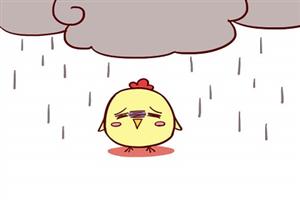 属鸡的人为人处世怎么样?能成大事?