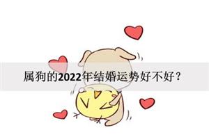属狗的2022年结婚运势好不好?