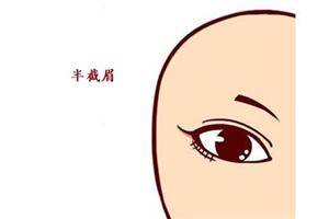半截眉毛的女人命运如何,在事业上能否取得一定的成就?