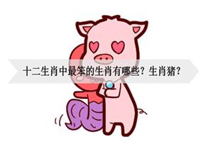 十二生肖中最笨的生肖有哪些?生肖猪?