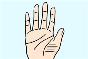 手相分析金星丘橫紋多的男人代表什么?感情細膩?