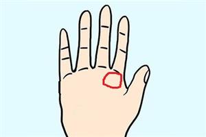 手相教程:掌丘在手上的部位图极其寓意!