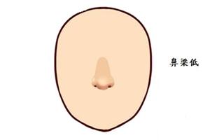 鼻梁生得低,生活呆板而单调的男人面相分析