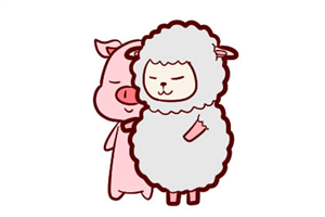 1995出生的生肖猪2020年多少岁?财富是否有收益
