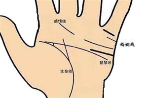 手相感情线断开代表什么意思?