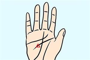 手相分析智慧线有三角形纹路好不好?会有很大的成就?