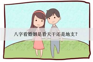 八字看婚姻是看天干还是地支?
