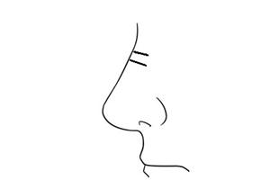 男人鼻梁有横纹的面相分析,鼻梁有横纹的男人克妻吗?