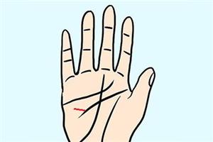 手相智慧线分叉是什么意思?聪明伶俐,充满活力?