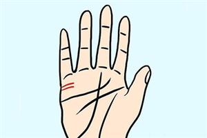 手掌姻缘线在哪里,真的可以看出婚姻状况吗?