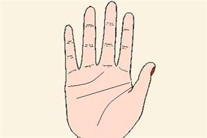 智慧线一直到手掌边缘代表什么意思