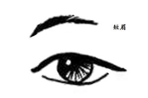眉毛短的女人命运好吗,事业上能否获得成功?