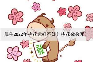 属牛2022年桃花运好不好?桃花朵朵开?