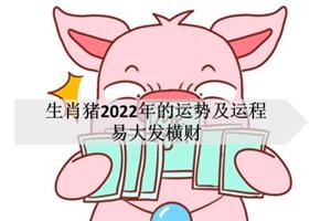 生肖猪2022年的运势及运程,易大发横财