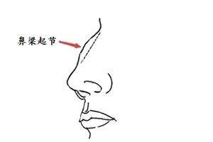 鼻梁起节的男人运势如何?事业容易大起大落