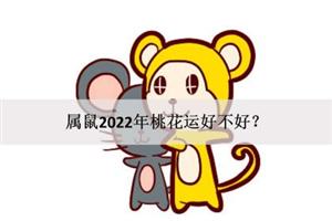 属鼠2022年桃花运好不好?顺利脱单?