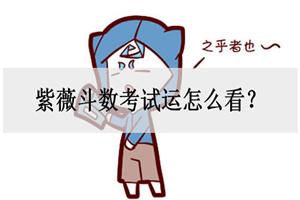紫薇斗数考试运怎么看?注意大运流年!