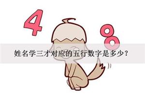 姓名学三才对应的五行数字是多少?