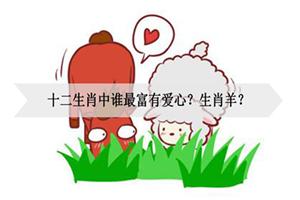 十二生肖中谁最富有爱心?生肖羊?