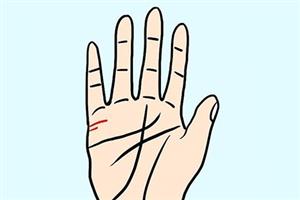 手掌姻缘线长代表什么?预示婚姻会更为牢固?#24535;茫? class=