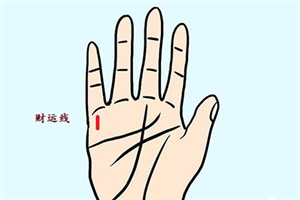 女人大富大贵的五种掌纹,快看看自己有没有?